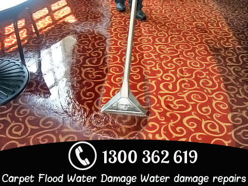Carpet Flood Water Damage Moore Park