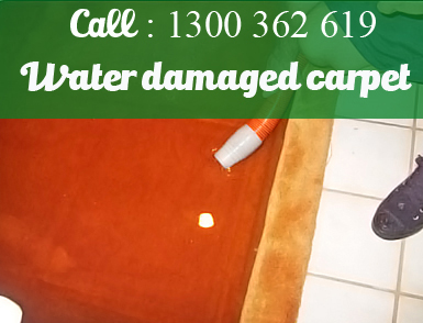 Dry Carpet Repairing North Richmond