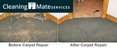Carpet Water Extraction Parramatta Westfield