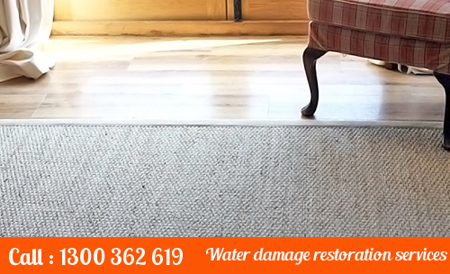 Eco-Friendly Carpet Cleaning Wallacia