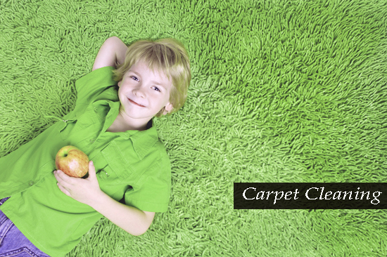 Eco-friendly Carpet Cleaning Buff Point
